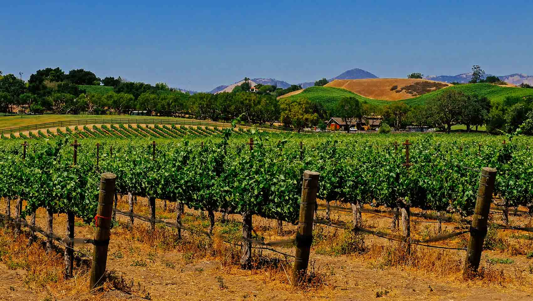 Washington wine country near kimpton hotels